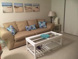 Seminole, Largo, 55 plus Beautiful  Florida Condo - Seminole vacation rentals