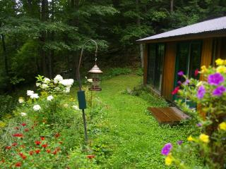 "At Cooper Lake ""Romantic""  Cedar Log  Cottage bordering Algonquin Park $175/nite - Algonquin Park vacation rentals"