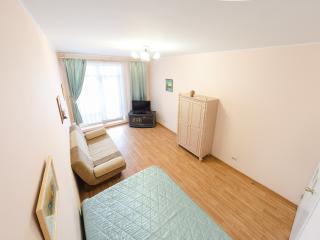 Cozy 1 bedroom Tomsk Condo with Internet Access - Tomsk vacation rentals