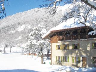 Bright 11 bedroom Chalet in Montriond with Internet Access - Montriond vacation rentals