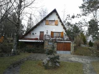 Adorable Ski chalet with Short Breaks Allowed and Game Room - Camprodon vacation rentals