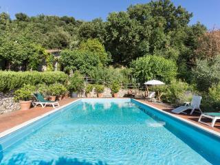 Casale del Rosmarino S. Vito di Narni - Narni vacation rentals