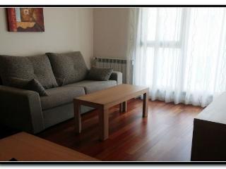 Romantic 1 bedroom Apartment in Lugo with Garden - Lugo vacation rentals