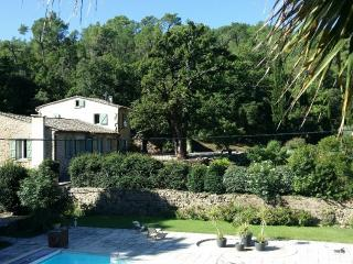 100m2 ground floor Apartment  with swimmingpool - Villeneuvette vacation rentals