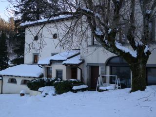 palazzo strigelli appartamento - Palazzuolo Sul Senio vacation rentals