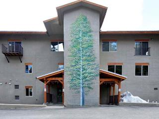 1 bedroom Condo with Central Heating in Taos Ski Valley - Taos Ski Valley vacation rentals