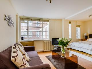 Chic comfy serviced studio Chelsea Zone 1 sleeps 4 - London vacation rentals