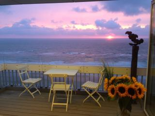 Nice 2 bedroom Apartment in Zandvoort with Internet Access - Zandvoort vacation rentals