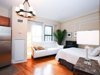 Exquisitely Furnished Studio- AdMo - Washington DC vacation rentals