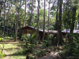 Nice House with Internet Access and Housekeeping Included - Cahuita vacation rentals