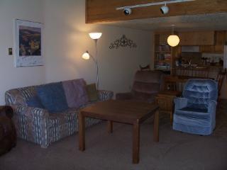 Lift C1  Condo - Angel Fire vacation rentals