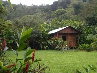 Nice Lodge with Internet Access and Balcony - Bijagua de Upala vacation rentals