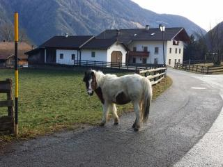2 bedroom Townhouse with Internet Access in Vipiteno - Vipiteno vacation rentals