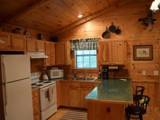 1 bedroom Cabin with Internet Access in Broken Bow - Broken Bow vacation rentals