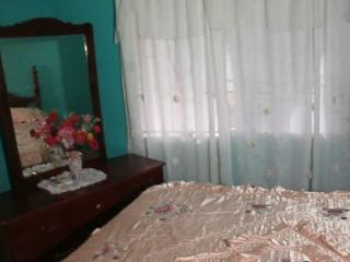 Perfect Guest house with Internet Access and A/C - Portmore vacation rentals