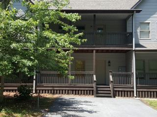 Cozy Condo with Deck and A/C - Pickens vacation rentals
