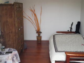Chambre double avec terrasse privée - Saint-Maur-des-Fossés vacation rentals