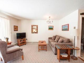 Edgemont Condominium C1 - Killington vacation rentals