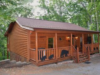 Tennessee Treasure Located in Pine Haven - Pigeon Forge vacation rentals