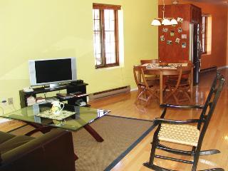 Joli condo très clair 80 m2 près Parc Lafontaine - Montreal vacation rentals