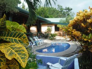 Ocean View House, Pool, AC, WIFI - Casa Mango - Playa Samara vacation rentals