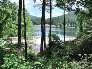 Lake Vista Luxury Rental Villa in the Heart of Big Canoe - Jasper vacation rentals
