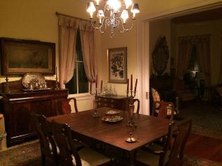 1 Bl to Street Car Turn Of The Century Home - New Orleans vacation rentals