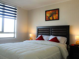 Central apartment, great river view - Concepcion vacation rentals