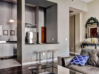 Downtown Warehouse District - 2 BD - Cleveland vacation rentals