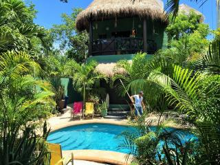 Maria,s Apt /Sexy Outdoor Kitchen, wifi, AC Pool - Tulum vacation rentals