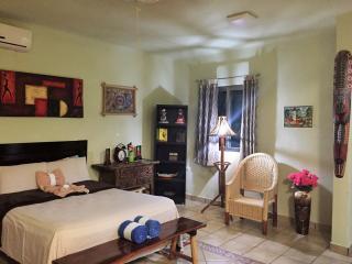 Luxury Studio Apartment with Pool Sleeps 3 - Tulum vacation rentals