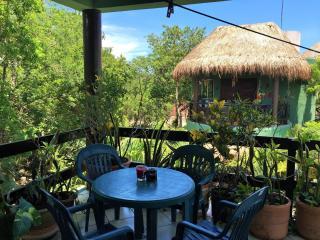 Encantada Apt 4 with Sexy Outdoor Kitchen, Pool - Tulum vacation rentals