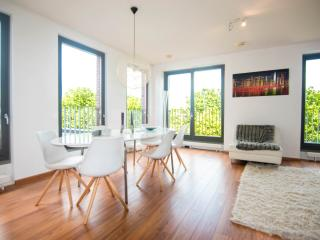 hippest area & very close to center + free parking - Amsterdam vacation rentals