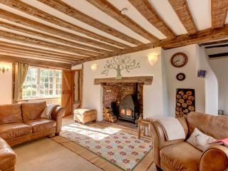 Cocketts, a peaceful historic rural retreat - Stowmarket vacation rentals
