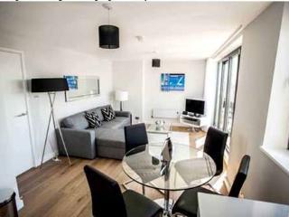 2 Bedroom Near Oxford St London  (4837) - London vacation rentals
