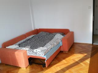 Nice Condo with Internet Access and Central Heating - Cluj-Napoca vacation rentals