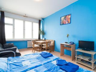 Apartment Prague Central - Prague vacation rentals