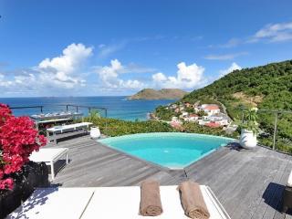 Villa Roc Flamands 11 St Barts Rental Villa Roc Flamands 11 - Gustavia vacation rentals