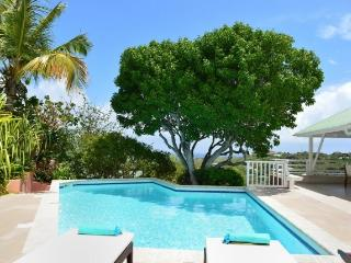 Villa la Tortue St Barts Rental Villa la Tortue - Grand Cul-de-Sac vacation rentals