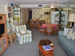 Beautiful 2 bedroom Apartment in Garden City Beach - Garden City Beach vacation rentals