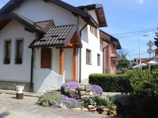 Apartmans 55 in the heart of Bihac - Bihac vacation rentals