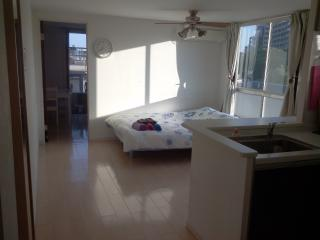 KomazawaOlympicPark 2bedroom3bed wifi - Meguro vacation rentals
