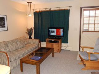 1 bedroom Condo with Fireplace in Winter Park - Winter Park vacation rentals