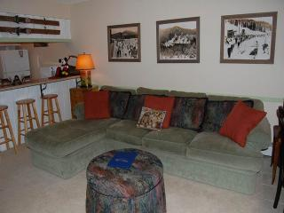 Meadow Ridge Court 10 Unit 2 - Fraser vacation rentals