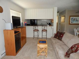 Romantic 1 bedroom Condo in Fraser with Fitness Room - Fraser vacation rentals