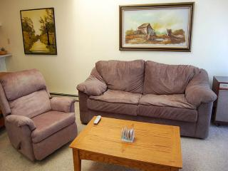 Comfortable 2 bedroom Apartment in Fraser with Television - Fraser vacation rentals