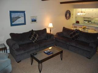 Lovely Condo with Balcony and Microwave - Winter Park vacation rentals