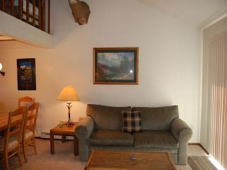 Comfortable 3 bedroom Apartment in Fraser with Television - Fraser vacation rentals