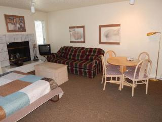 Timber Run Vista Unit 103 - Winter Park vacation rentals