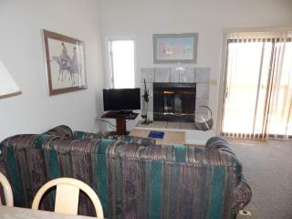 Timber Run Vista Unit 316 - Winter Park vacation rentals